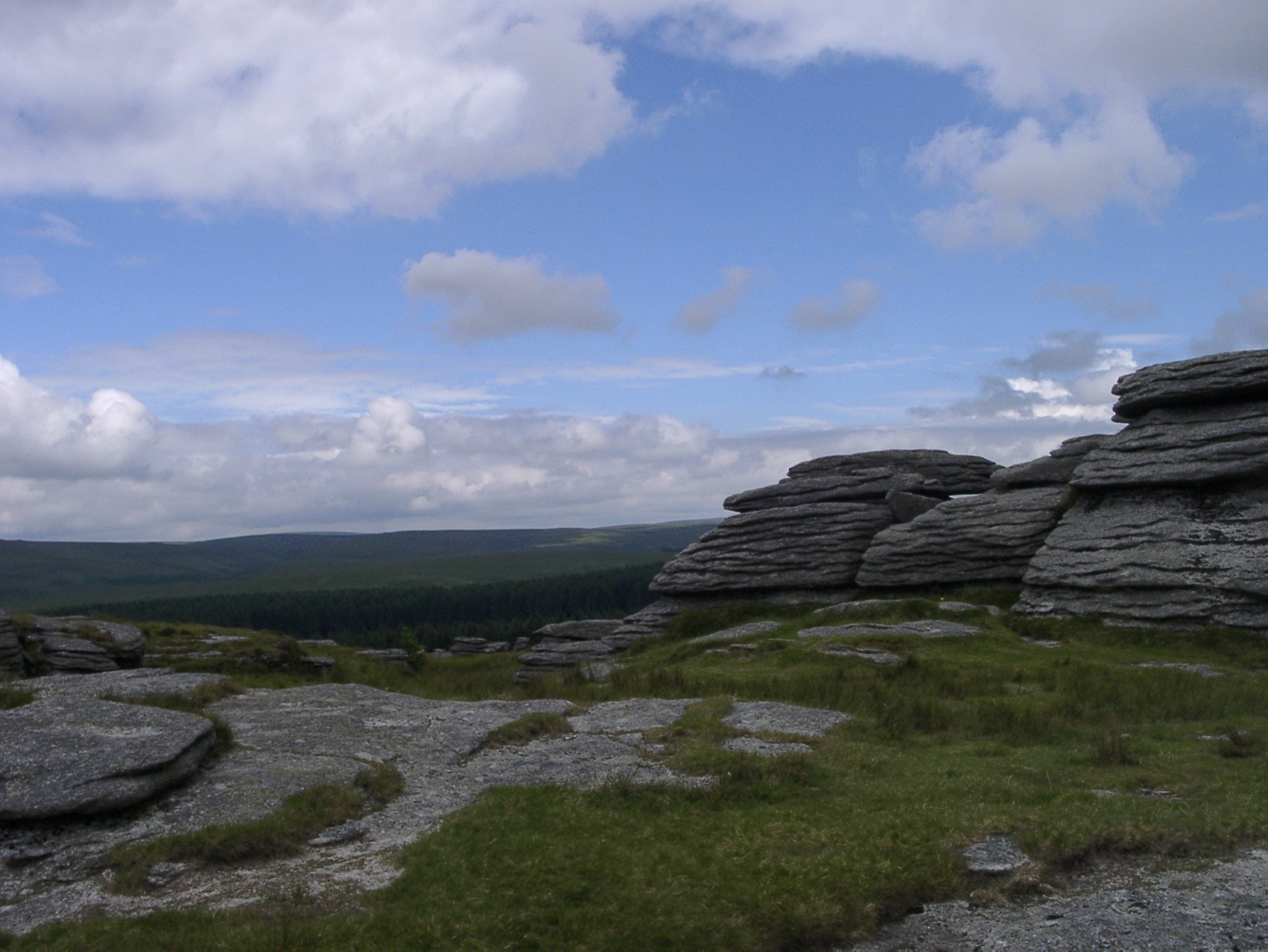 Roughtor | Forestry England