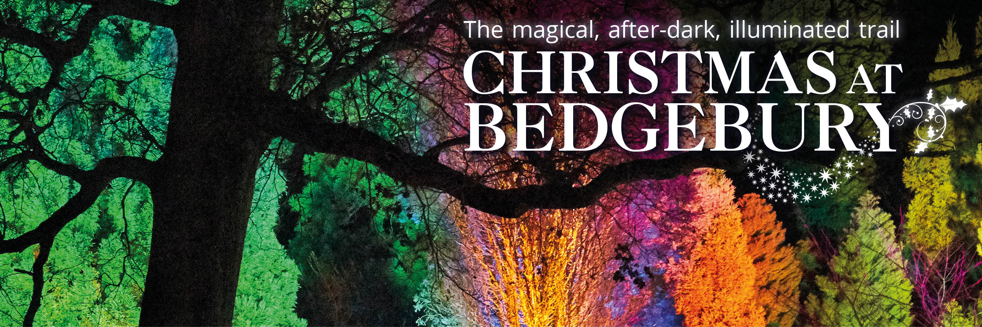 Christmas At Bedgebury Forestry England