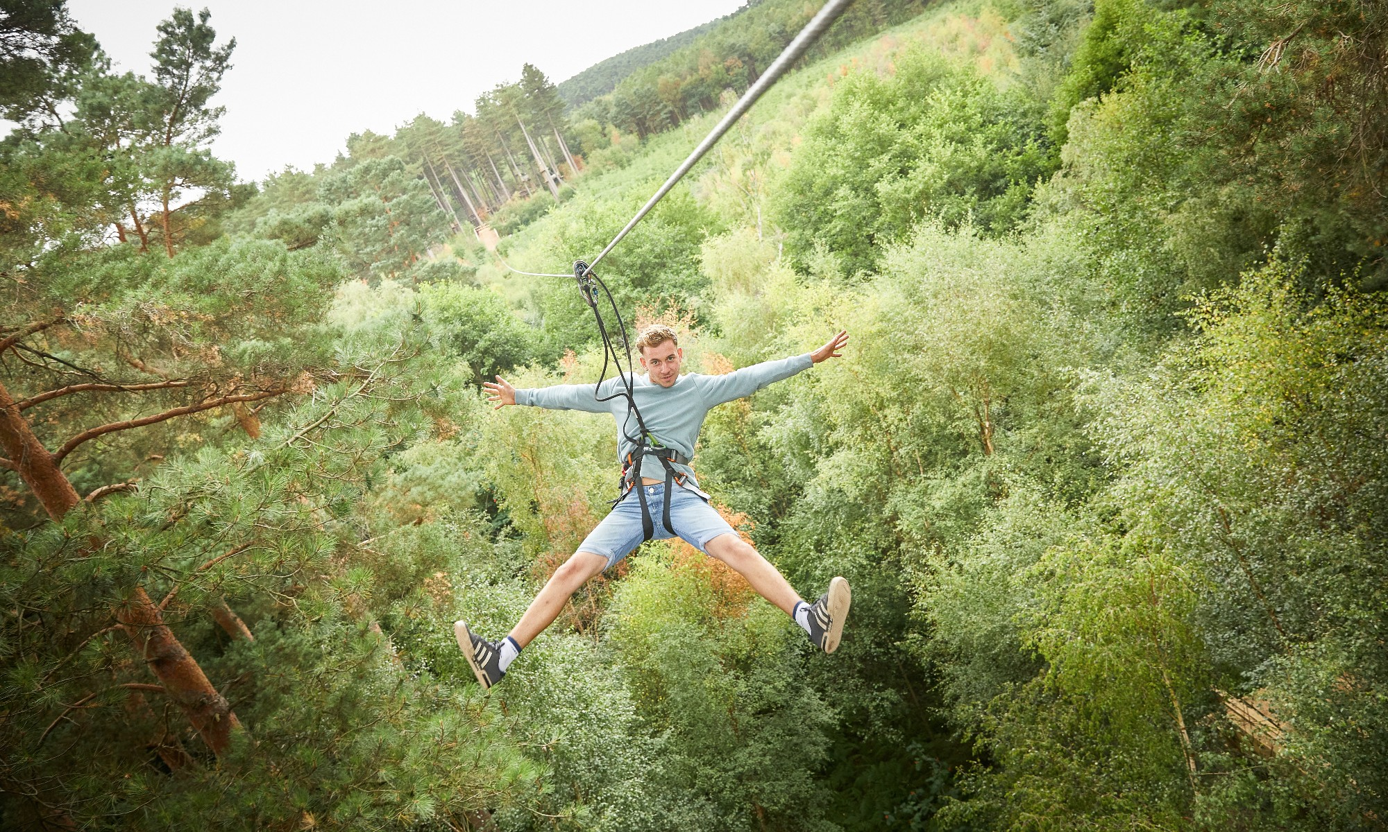 Go Ape  Tree Top Challenge at Cannock Chase