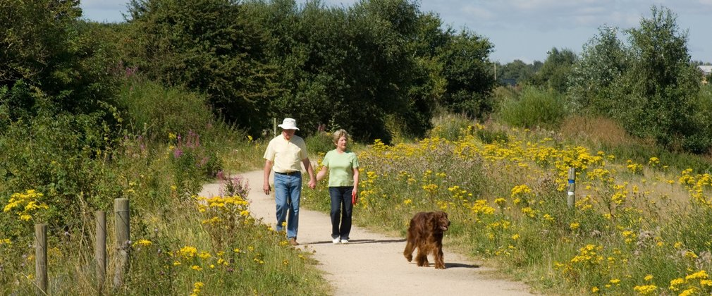 Couple on dog walk along easy access trail