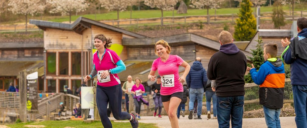 Forestry 100 Running Series at Bedgebury