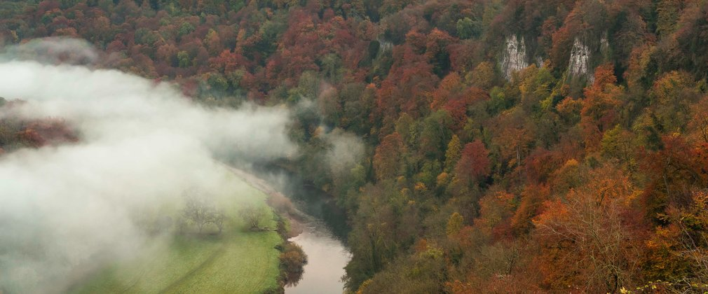 Mist in the valley over Symonds Yat at sunrise