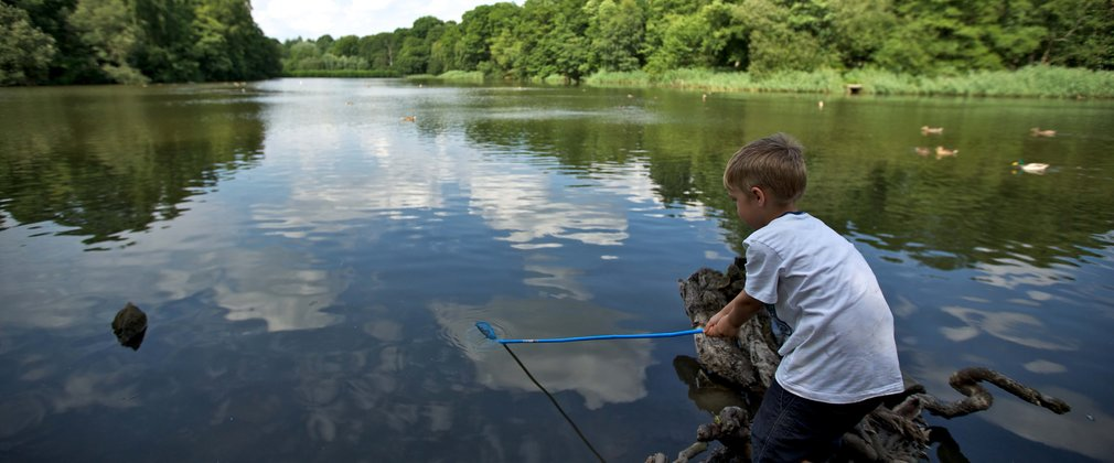 small boy fishing in a woodland lake