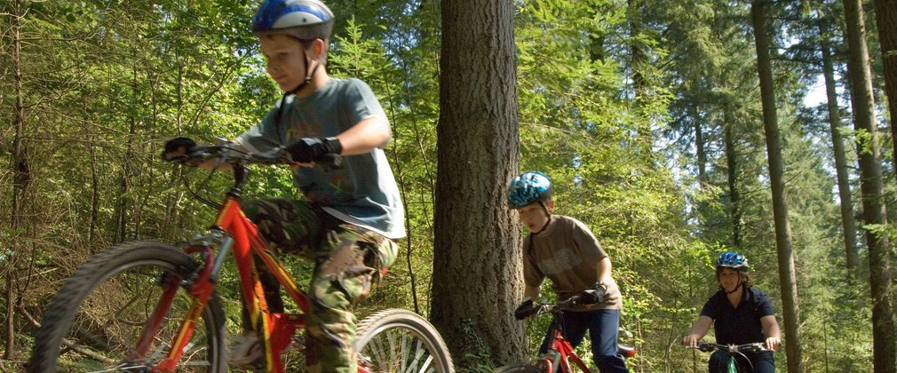 Kids riding on mountain bikes through the forest