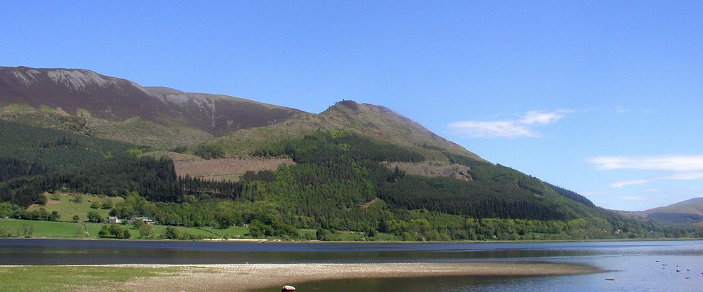 Dodd Wood from Bassenthwaite Lake