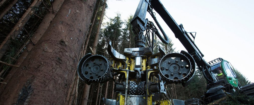 Harvester machine working in Kielder Forest