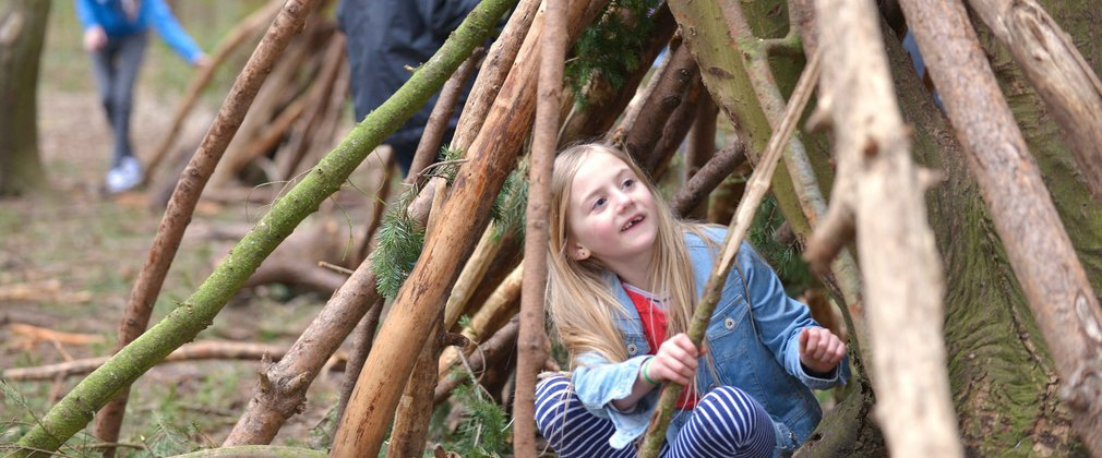 Children building dens in the forest