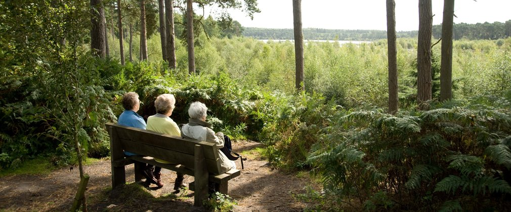 Three women sat on a bench enjoying the view in the woods