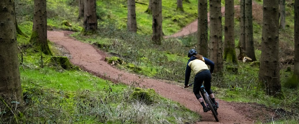 Rider on cycling trail in the Forest of Dean