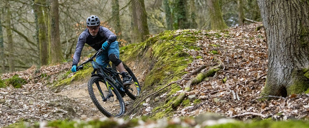 Mountain biker in the Forest of Dean