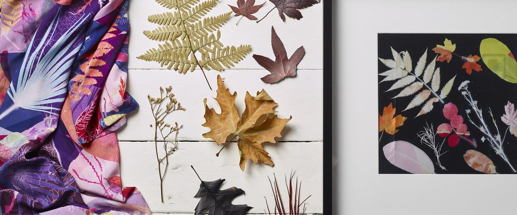 Printing with Leaves | Forestry England