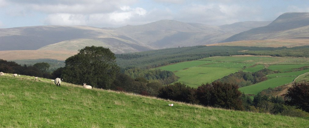 View of Pillar from Blengdale Forest viewpoint