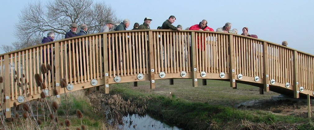 Community on bridge over small stream in woodland