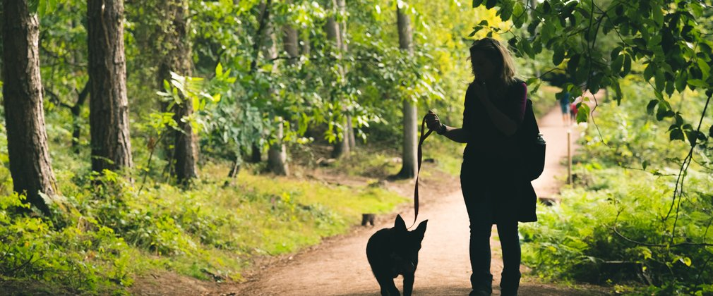 Woman walking her dog, silhouetted against forest background