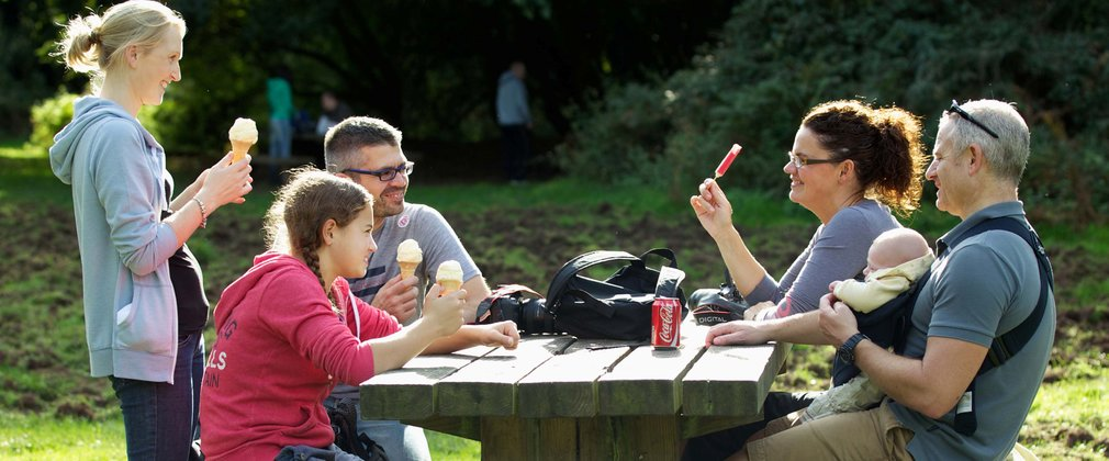 Family having picnic and ice cream in the forest
