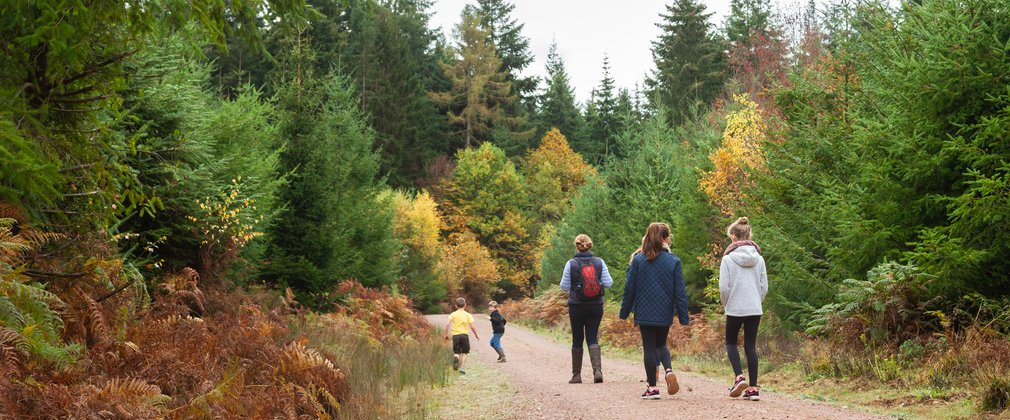 family walking through forest of dean
