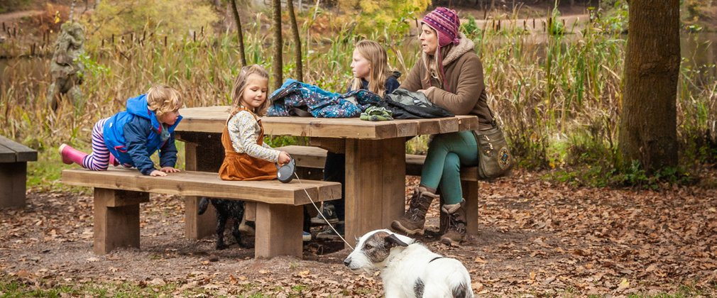 Forestry England's top 10 picnic spots
