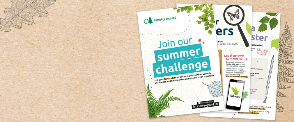 Forestry England Summer Challenge activity sheets
