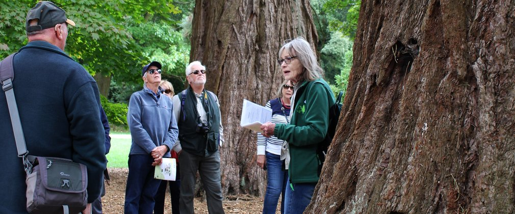 Guided Walk Westonbirt