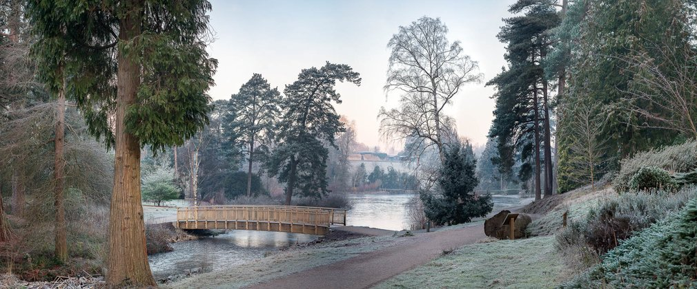Bedgebury National Pinetum And Forest Forestry