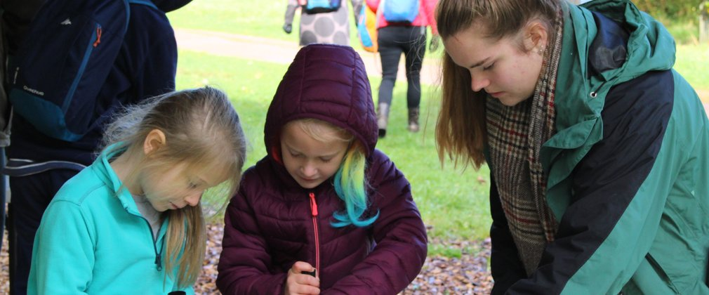 Learning volunteer westonbirt