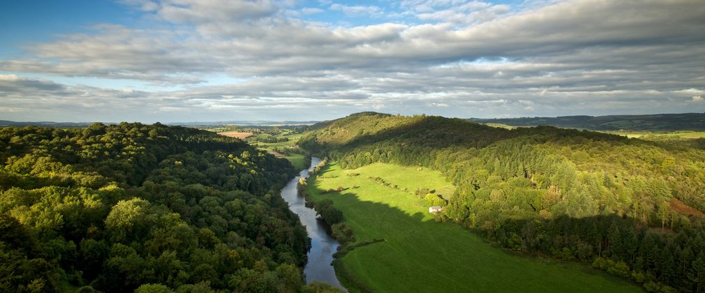 View from Symonds Yat Rock in spring