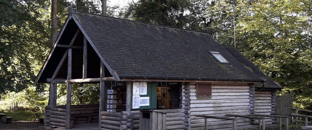 Symonds Yat Rock Forestry England