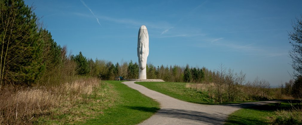 The Dream, art sculpture image at Sutton Manor forest