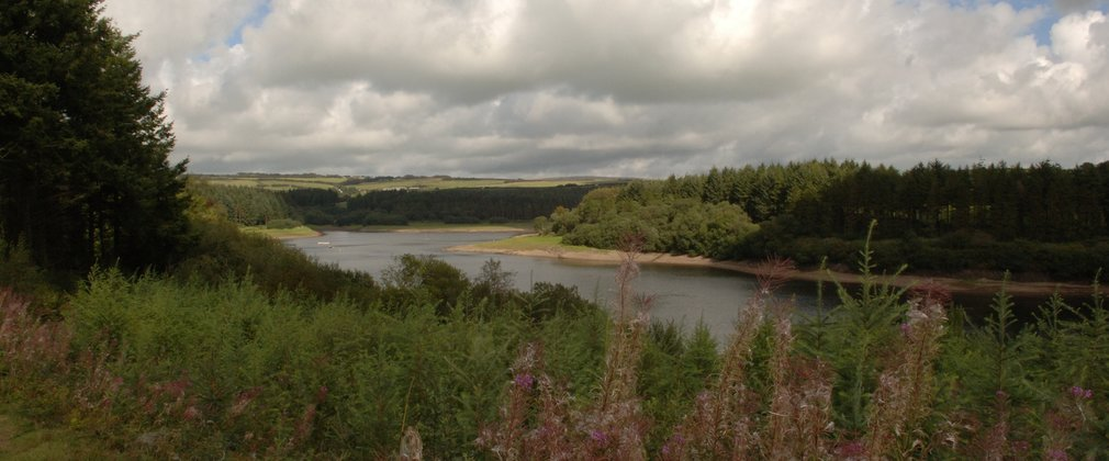 Wistlandpound reservoir from a distance