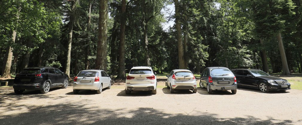 Cars parked under the trees in a forest car park