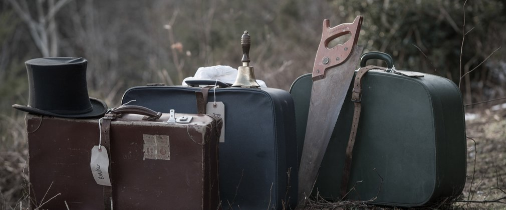 Old suitcases on a forest floor