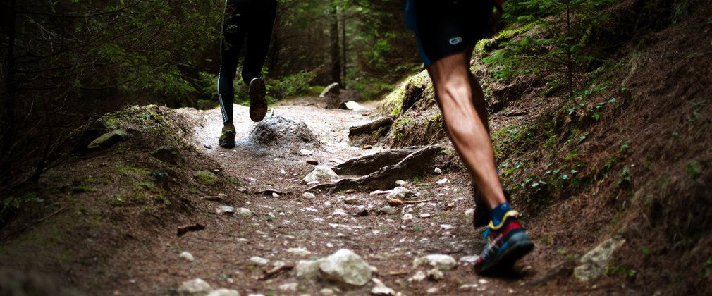 Trail runners in the forest
