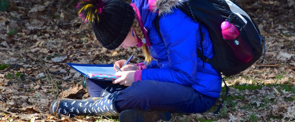 Student recording observations for woodland activity