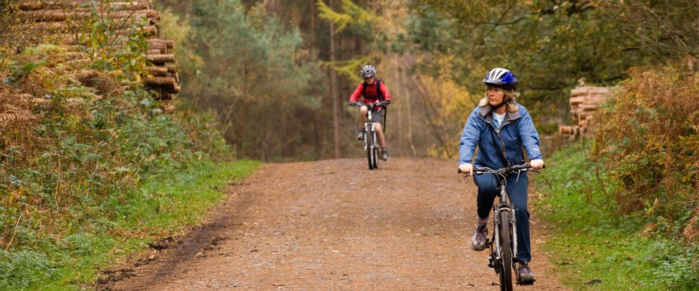 Cycling and mountain biking trails at Delamere | Forestry