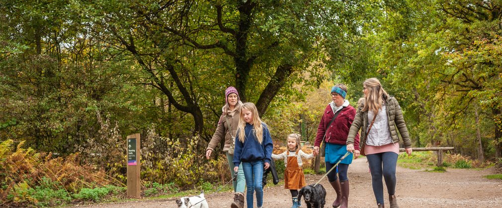 Family walking in autumn