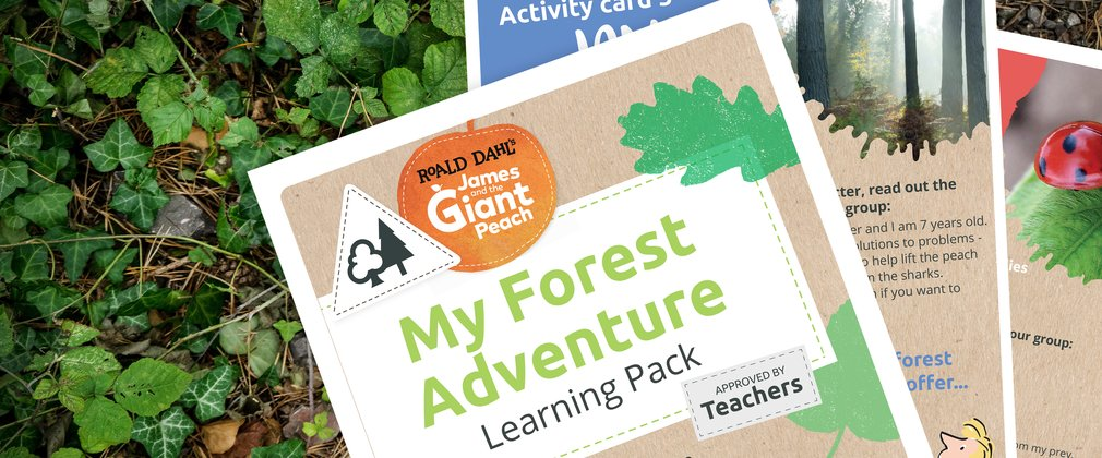 Roald Dahl My Forest Adventure Teachers Pack