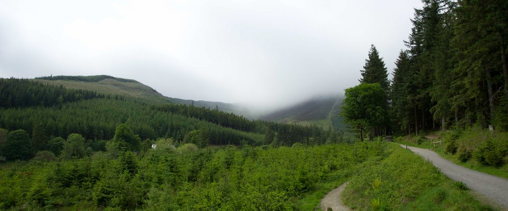 Trail and landscape at Whinlatter