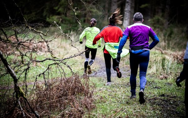 Whats it really like to run in the forest?