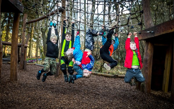 children enjoying forest play area