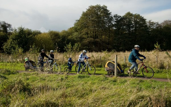 Families enjoying cycling in the forest