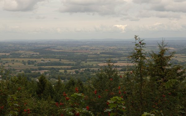 View across Blackdown Hills from viewpoint