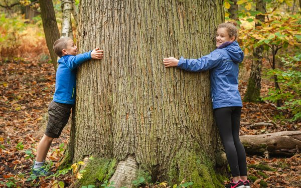 Children hugging tree