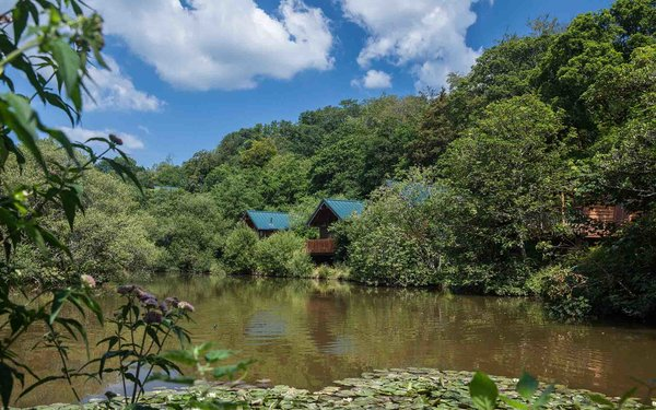 Forest Holidays at Deerpark, Cornwall