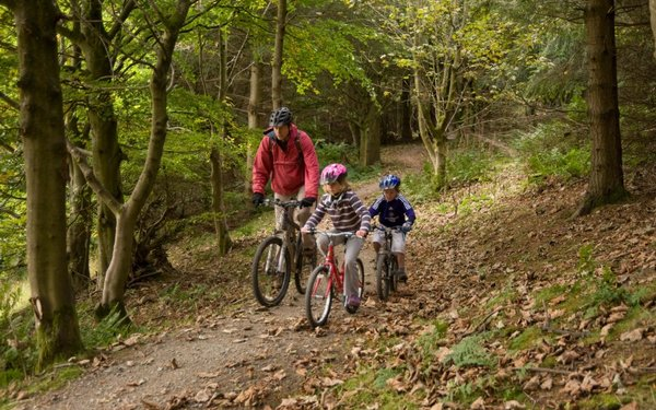 Family on bike ride in the forest