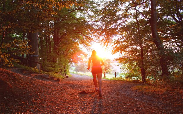 Woman running towards sunset in the forest, autumnal forest