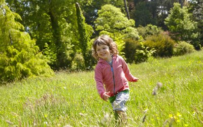 Summer adventure playing in a woodland glade