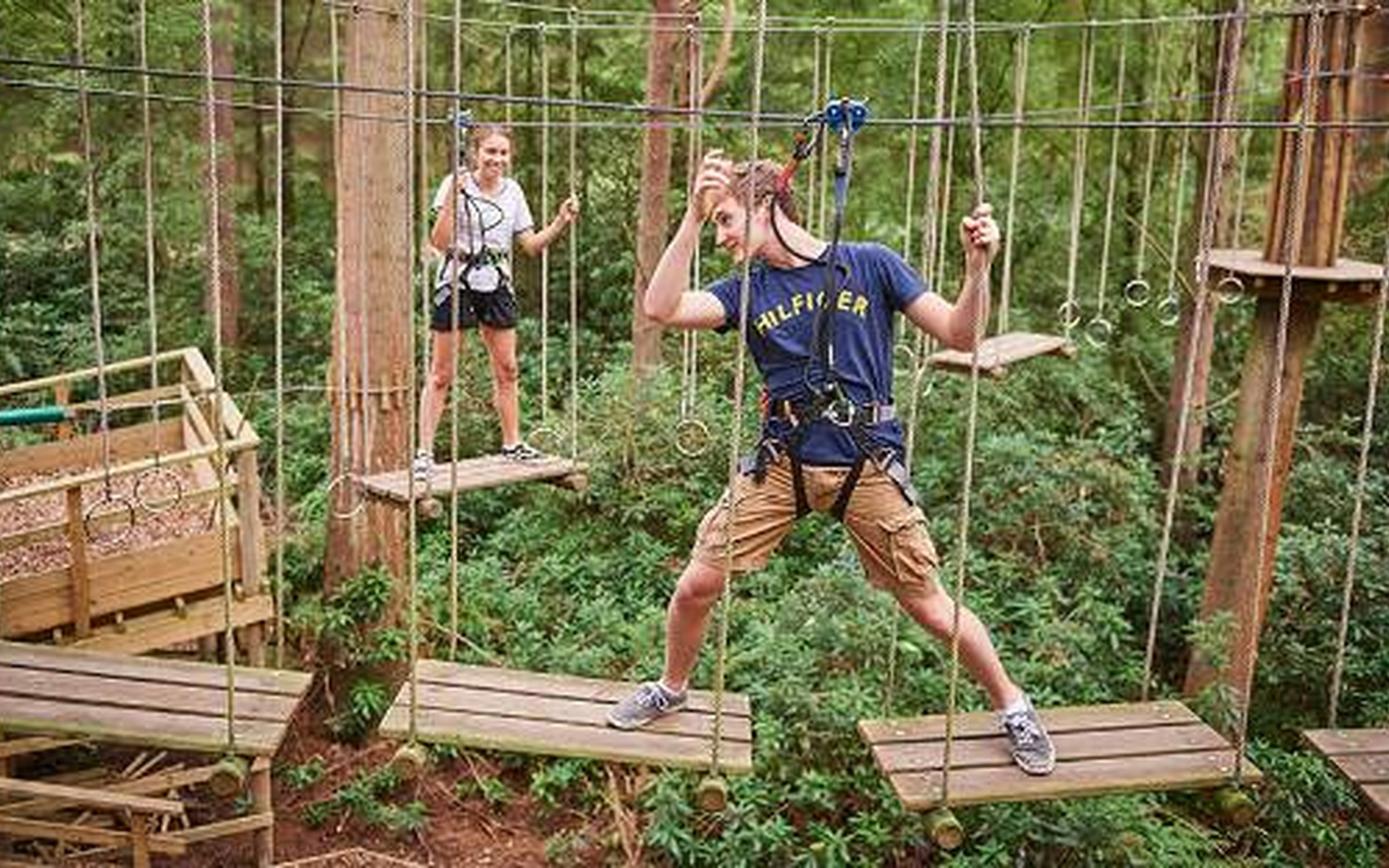 Go Ape Tree Top Challenge Forestry England