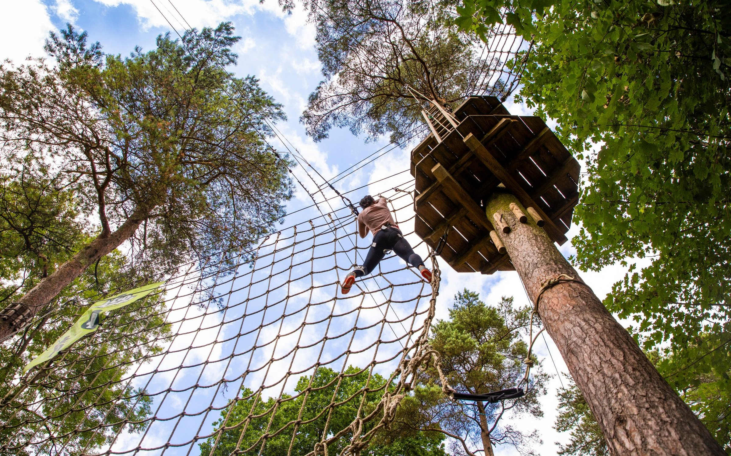 Go Ape Tree Top Challenge At Wendover Woods Forestry England