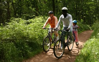 Family cycling through Hamsterley forest, blue mountain bike trail