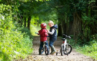 Two small boys learning to cycle in the woods
